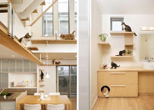 Pet friendly house design