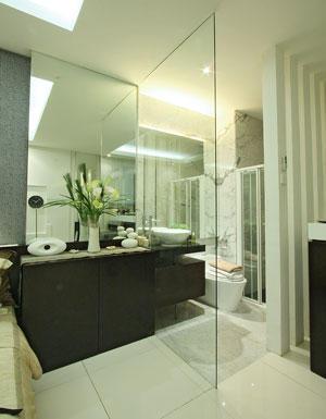 creating transparent door bathroom the transparent door