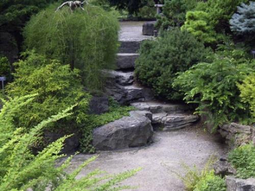 Rock Landscaping Garden