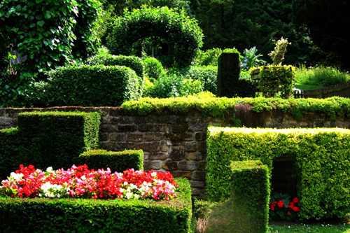 abstract garden design