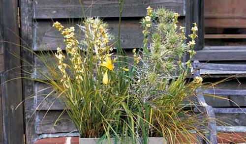 Flower Pot Decoration