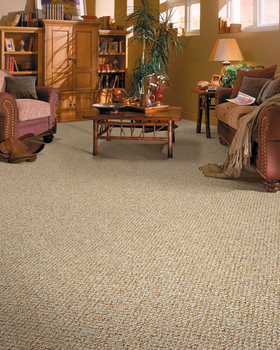Carpet Cleaning for Modern Style