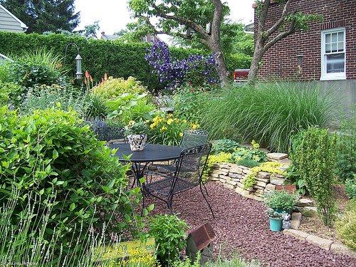 Lush Tiny Backyard Ideas