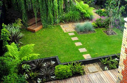 Ornamental Grasses in Garden
