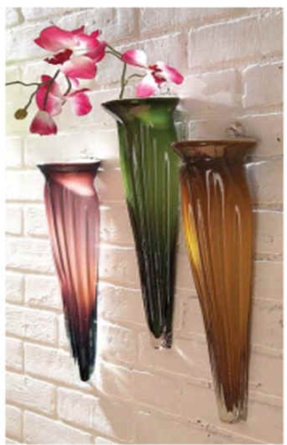 Plant for Wall Decoration at home