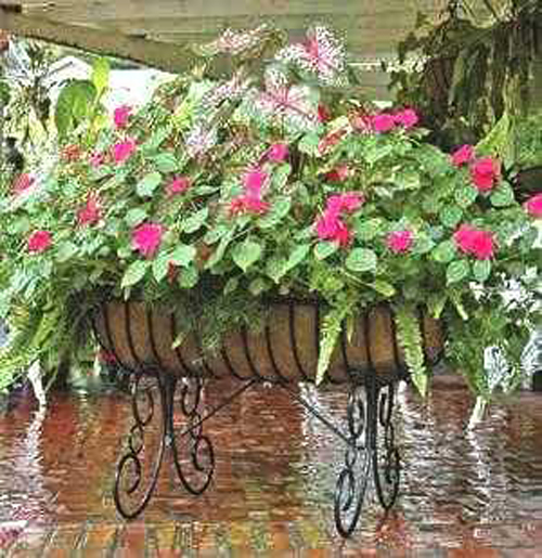 Wrought Iron Planter Design