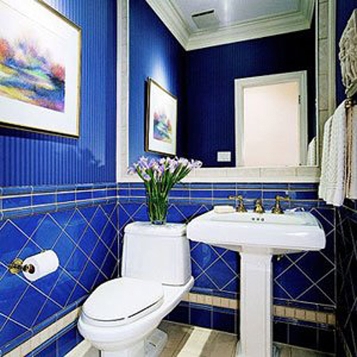 Cobalt Blue Tile bathroom