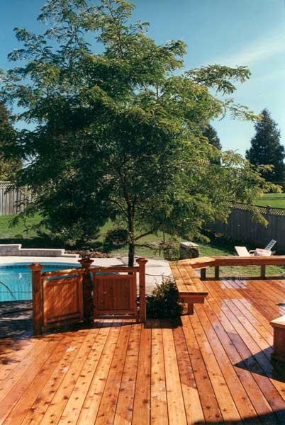 Cedar Decking Design