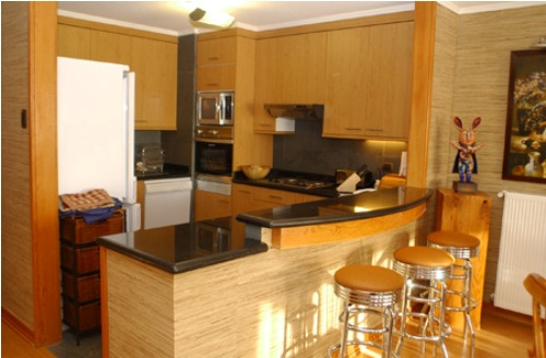 kitchen paneling ideas in natural style